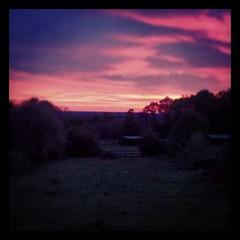 #boitron #field #sunset #iledefrance #seineetmarne #easter #skyisburning - Photo of Reuil-en-Brie