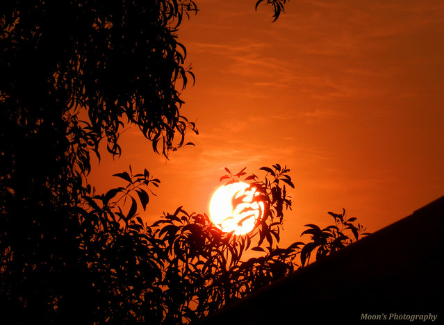 Sunset at Shantiniketan, Bolpur, West Bengal