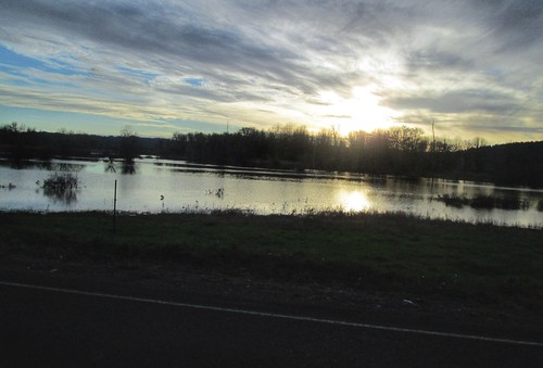 Wetlands on Spring Hill Rd, just south of Fern Hill Rd