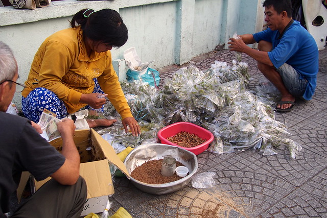 mealworms for songbirds, Ho Chi Minh City (Saigon), Vietnam