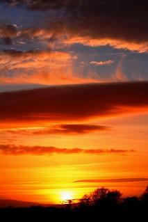 Portrait of a sunset.
