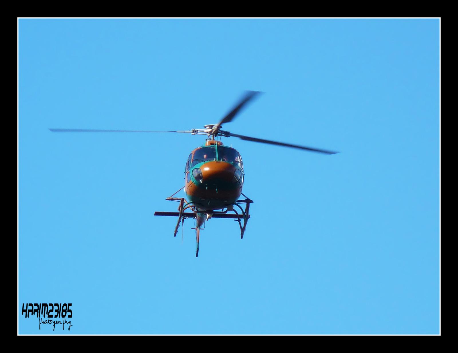 صور مروحيات القوات الجوية الجزائرية Ecureuil/Fennec ] AS-355N2 / AS-555N ] - صفحة 5 27360366136_2499e25e03_o