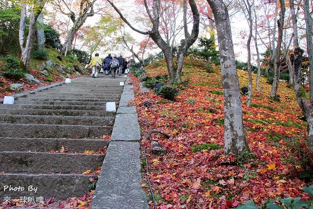 嵐山旅遊景點-常寂光寺11