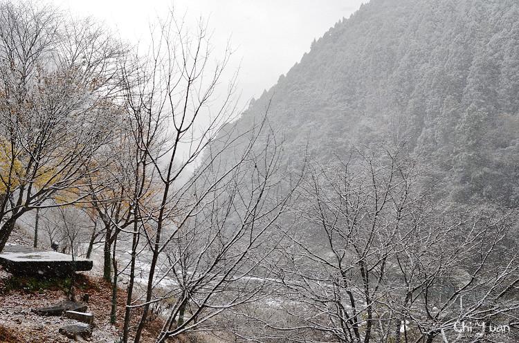 嵯峨野觀光鐵道-冬雪25.jpg