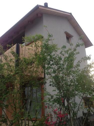 植栽と住宅