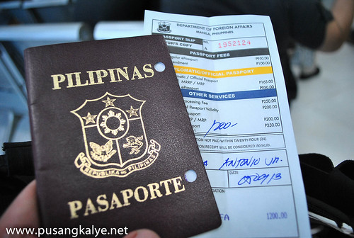 DFA_Passport Renewal Guide