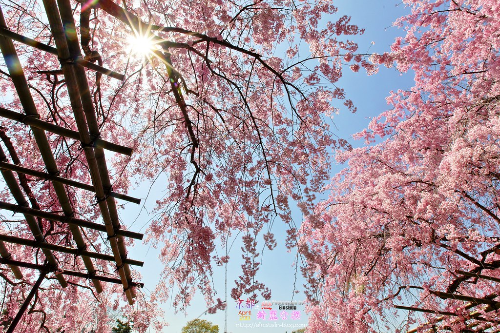 2013-04-05-11h30mIMG_4983_84_85