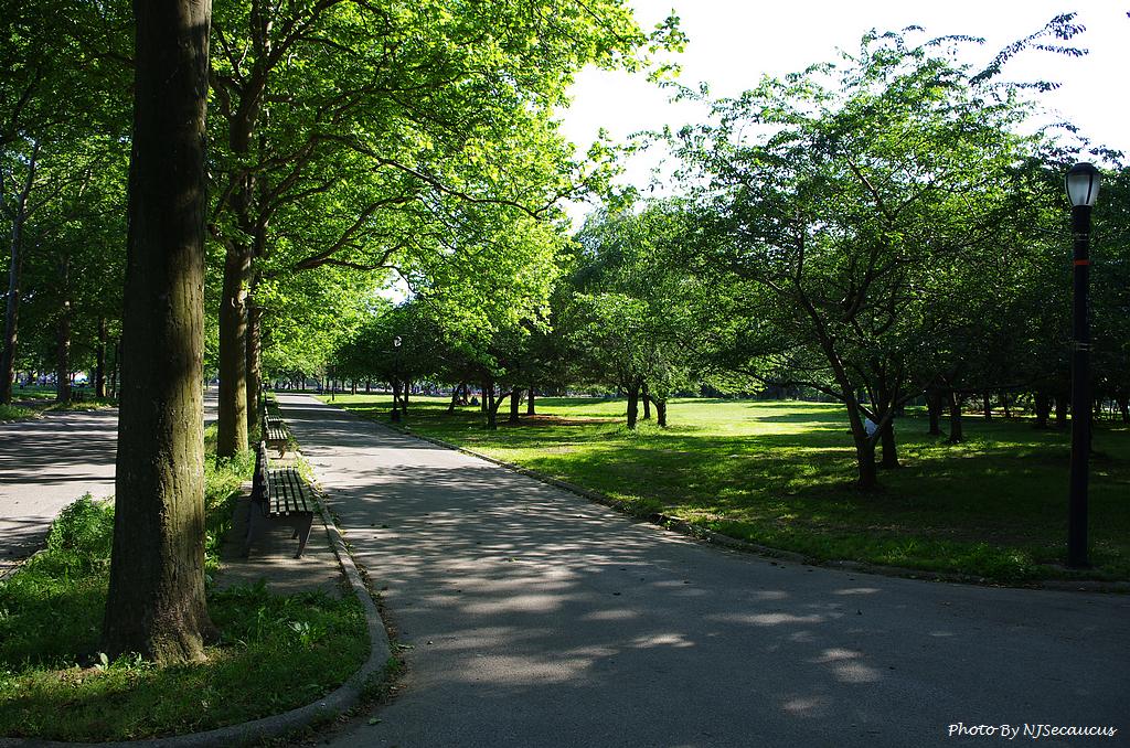 【㊣Kit Lens趴趴照】法拉盛米朵斯可樂娜公園
