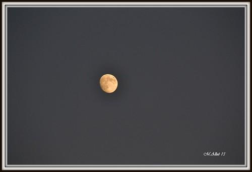 Luna by Miguel Allué Aguilar