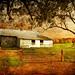 Burke's Garden Barn by keeva999