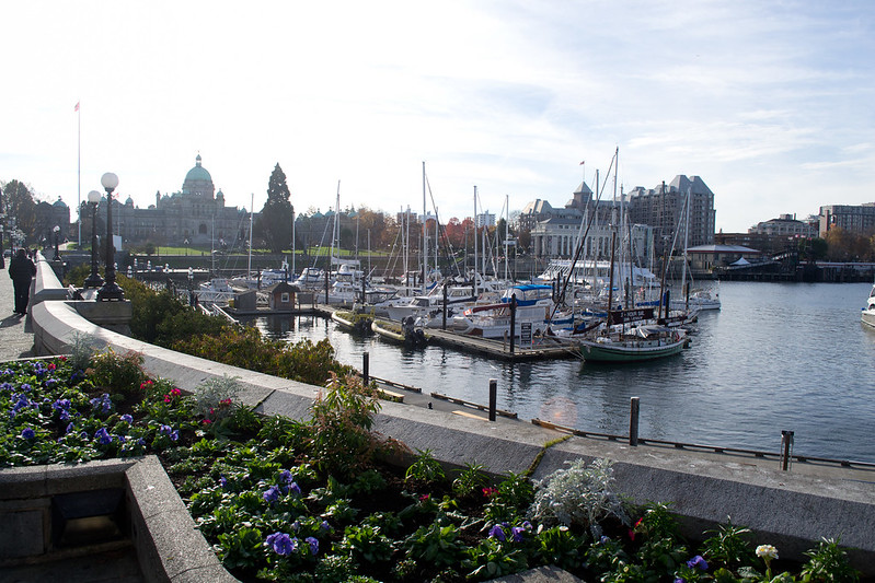 Inner Harbour | 20 Reasons Why British Columbia is the Best Place on Earth | packmeto.com