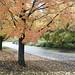 2013 Autumn, Topeka KS