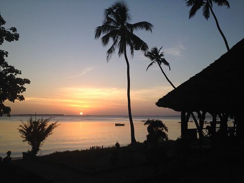 ocean africa sunset water silhouette palmtrees zanzibar tansania benschroeter iphone4s iphone4sbackcamera428mmf24 ungujaukuu