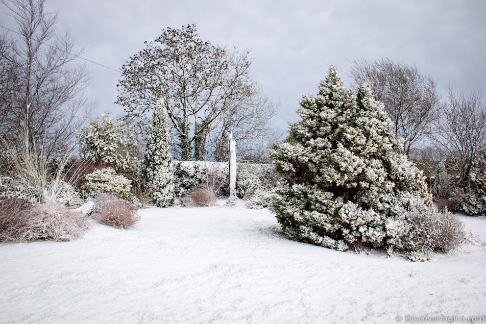 Snow, Ireland, February 2014