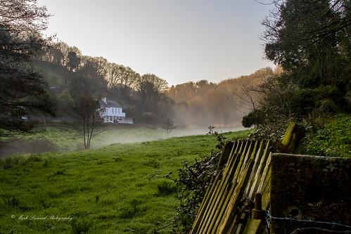 mist water sunrise countryside meadow jersey channelislands