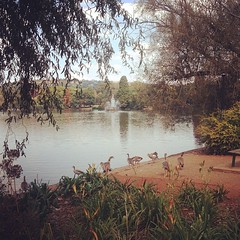 It's #ZooLake in #Jozi #MeetSouthAfrica