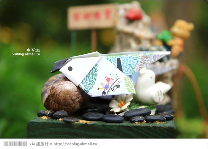 【新竹景點推薦】森林鳥花園~親子旅遊的好去處!在森林裡鳥兒與孩子們的樂園9