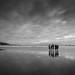 Norman Bay - Wilsons pron by john@aus
