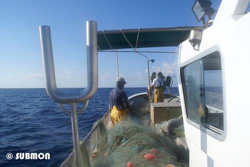Pescadores de trasmallo