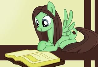 pony klein2