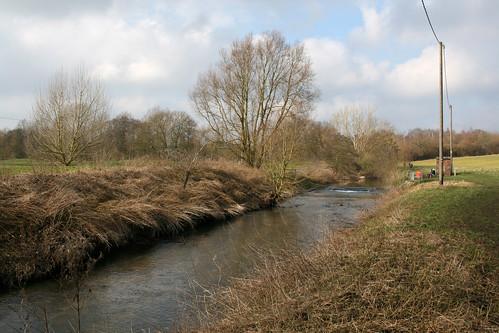 The River Colne near Earls Colne