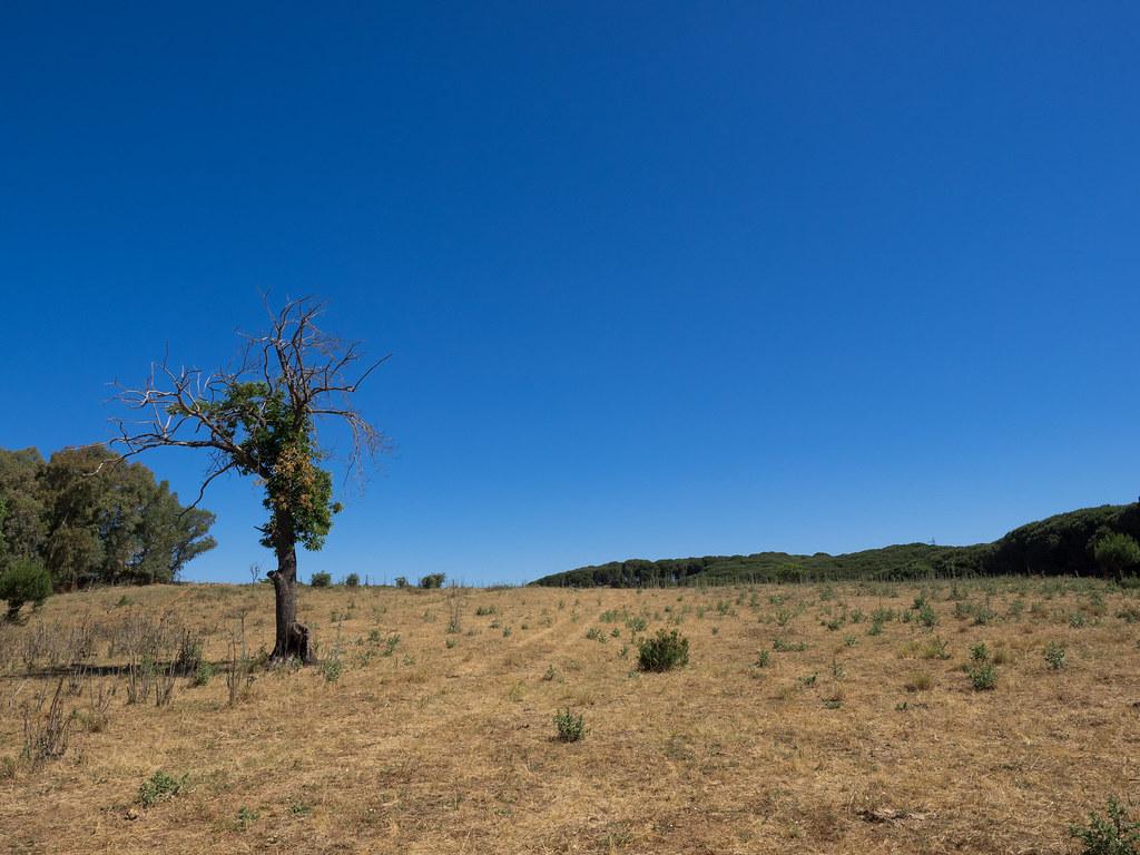 caropepe valguarnera enna sicily - photo#15