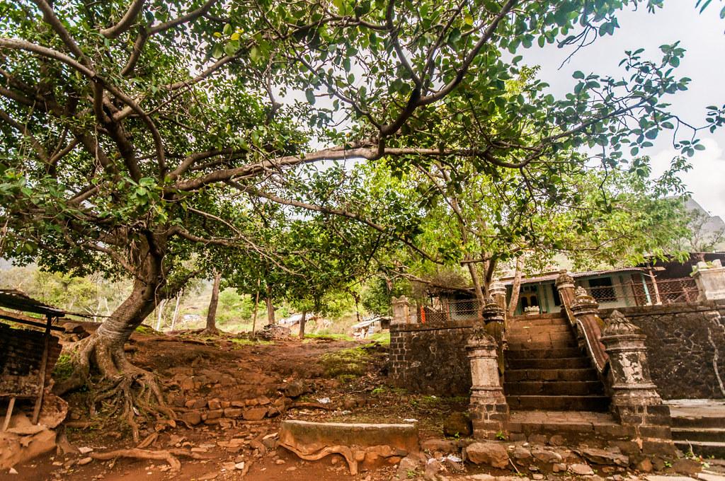 BrahmagiriTrekTrimbakeshwar_03