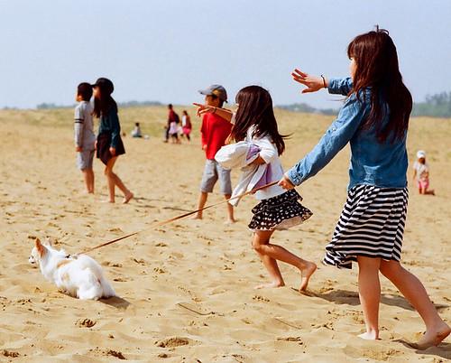 Tottori sand dunes_01