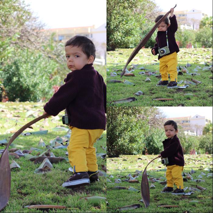 sábado no jardim