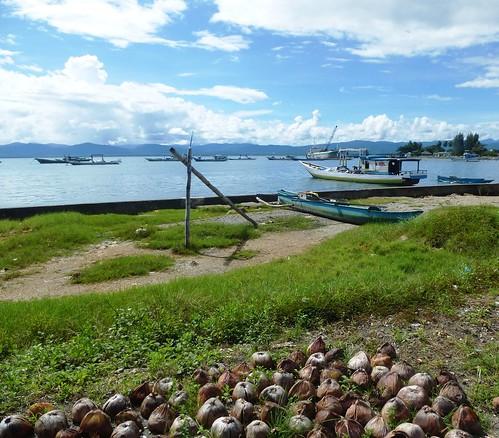 Moluques13-Seram- Masohi-baie (15)