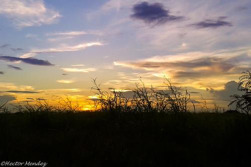 sunset sol venezuela samsung puesta android llano guarico gti8190