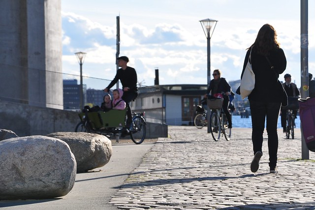 Islands Brygge - Stones