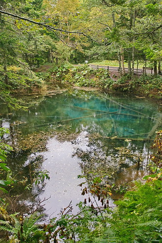 【写真】2013 : 神の子池/2021-01-28/PICT2012