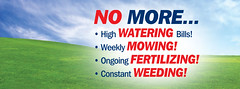 No more mowing, watering, fertilizing or weeding!