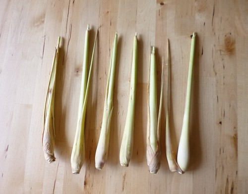 How to make lemongrass last longer by adline✿makes