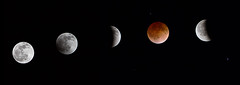 MDR_eclipse_140415_Phases
