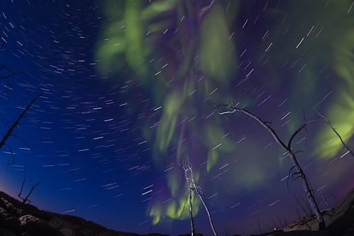 Giant Star Trail203