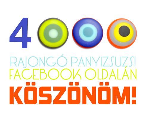 4000_rajongo