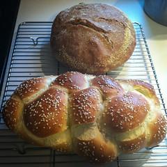 meal(0.0), pan de muerto(0.0), danish pastry(0.0), baking(1.0), tsoureki(1.0), bread(1.0), baked goods(1.0), challah(1.0), food(1.0), dessert(1.0), brioche(1.0),