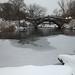 Frozen Lake by Dave Gorman