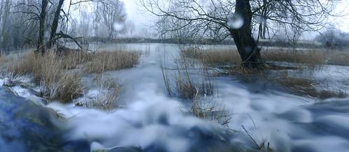 Meuse en hiver