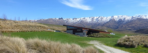 winery centralotago amisfield