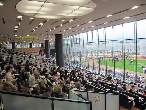 函館競馬場のパドックシート