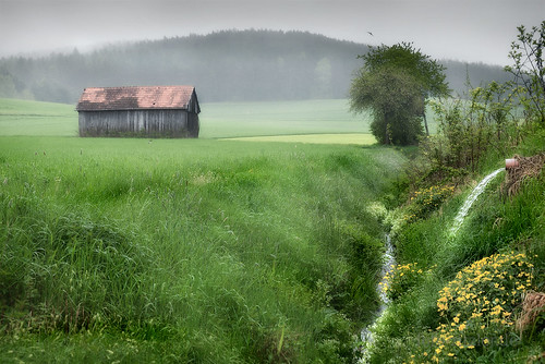 barn and creek