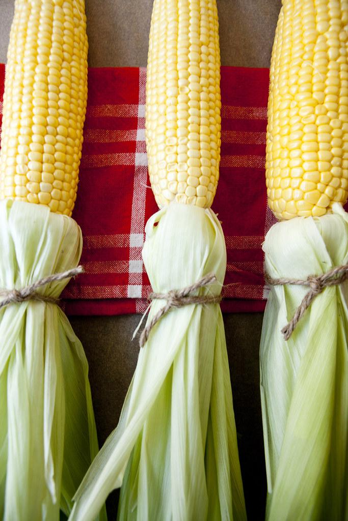 corn5small