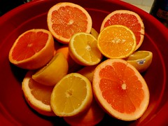 plant(0.0), produce(0.0), drink(0.0), clementine(1.0), grapefruit(1.0), citrus(1.0), orange(1.0), blood orange(1.0), fruit(1.0), food(1.0), tangelo(1.0), juice(1.0),
