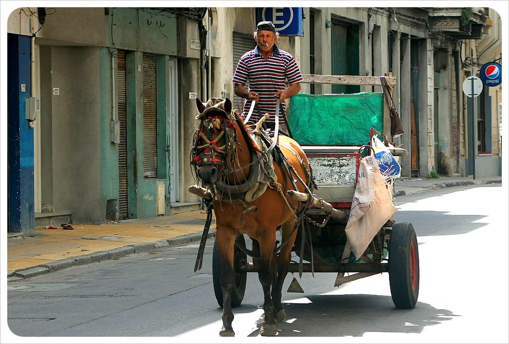 horse carriage in montevideo