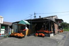 Dekopon shop