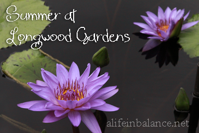 Summer at Longwood Gardens, Kennett Square