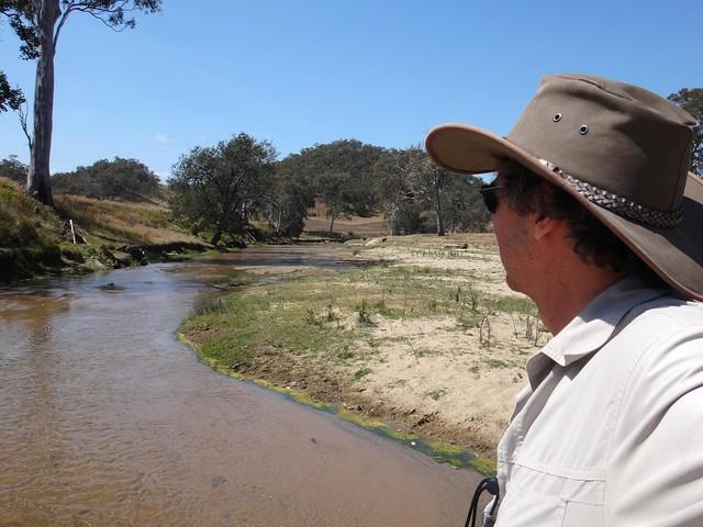 Ivory Creek